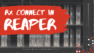 RX Connect in Reaper? Here's how to do it!   Reaper for Podcasting